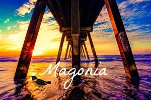 magonia revised